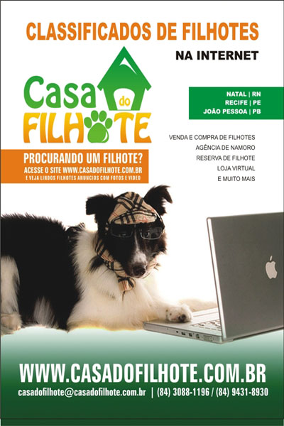 Classificado de Filhote na Internet