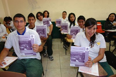 Apoyos pedagógicos para el uso de resultados ENLACE