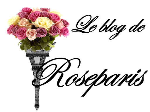 Le blog de Roseparis
