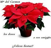 """Felicitación de Mari Carmen, alias """"Gata coqueta"""""""
