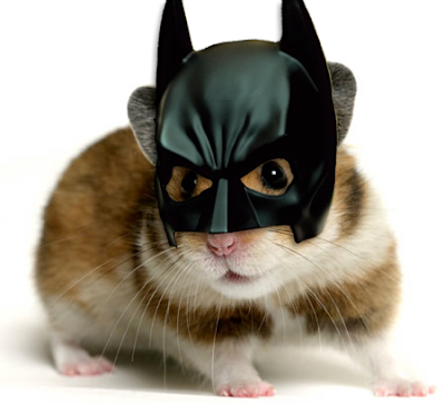hamster culture Bat+hamster