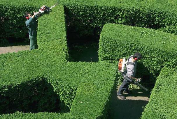 Giardiniere monza e brianza manutenzione giardini for Manutenzione giardini