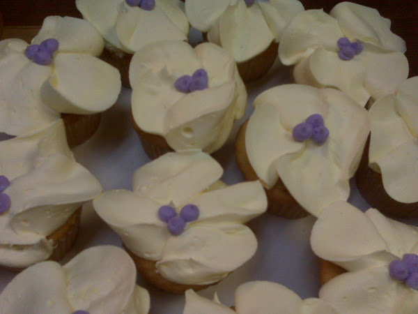 Pearl_TropicalFlower_Cupcakes302