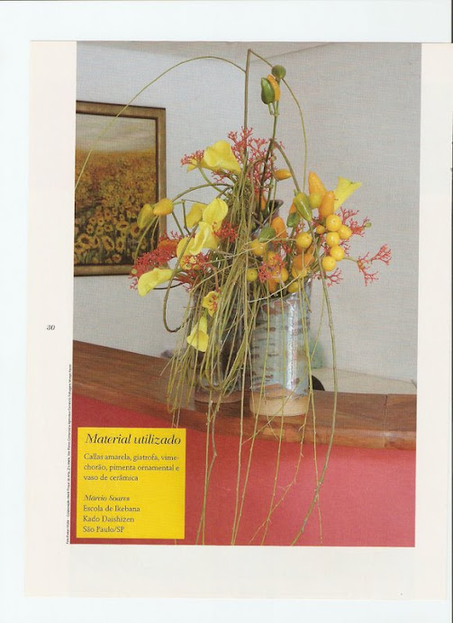 REVISTA ARRANJO FLORAL