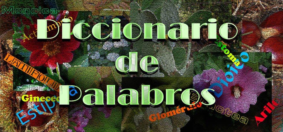 DICCIONARIO DE PALABROS