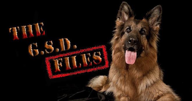G.S.D.Files