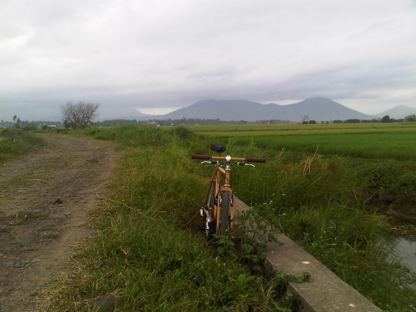 [new+pila+pinagbayanan+road.jpg]