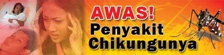 Informasi: Chikungunya