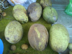 7 Rare Fruit of Kalimantan-Indonesia