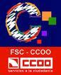 Sección Sindical CC.OO. R.PP.MM. Santiago Rusiñol