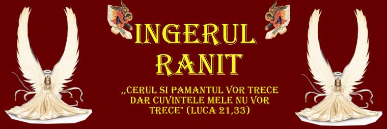 Ingerul Ranit