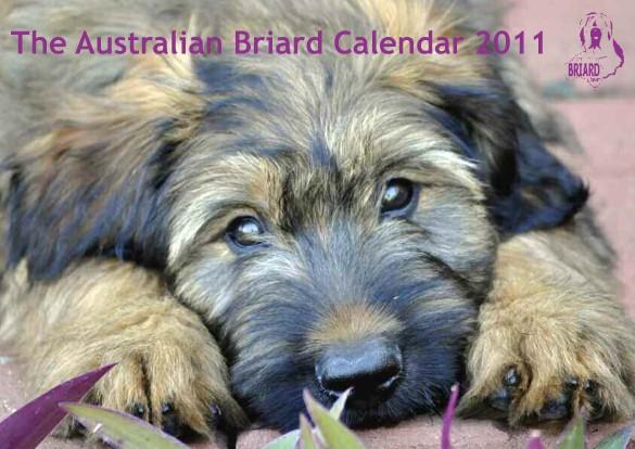 2011 calendar australia. 2011 calendar australia.