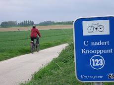 fietsen in Haspengouw