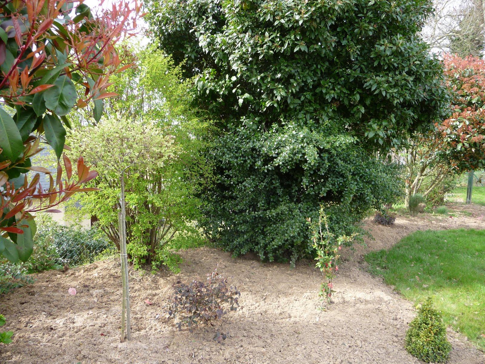 Ma terre de bruy re nettoyage de printemps for Nettoyage jardin printemps