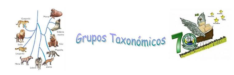Grupos Taxonómicos