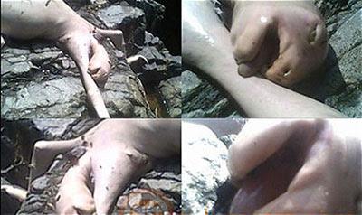 Misteriosa creatura uccisa a Panama 2009 foto