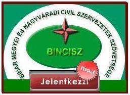 Dr. Fleisz János a BINCISZ elnöke