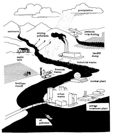 water pollution cartoon. Water Pollution Facts.