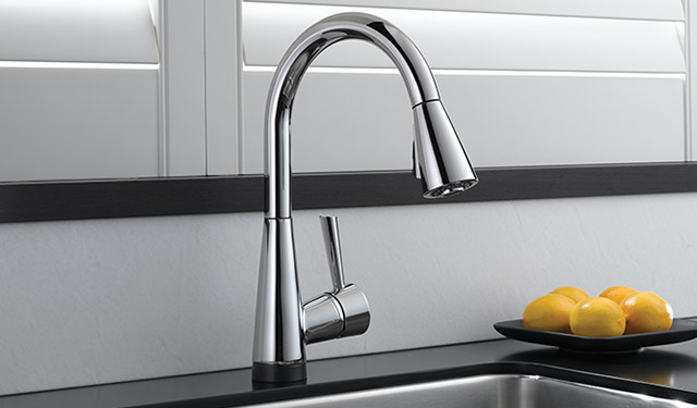 Brizo Kitchen Faucet Two Handles
