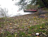 autunno a caldonazzo