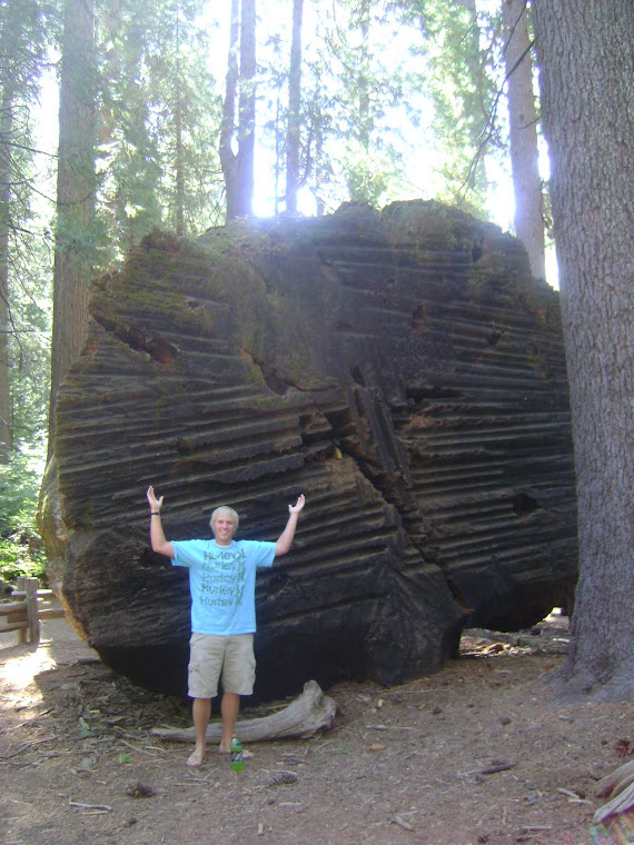 Me in California with a giant, but dead, redwood.