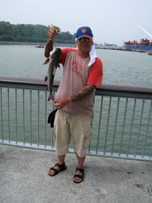 Catfish or Ikan Duri Caught At Woodland Jetty Fishing Hotspots was created to share with those who are interested in fishing on tips and type of fishes caught around Woodland Jetty Fishing Hotspots.