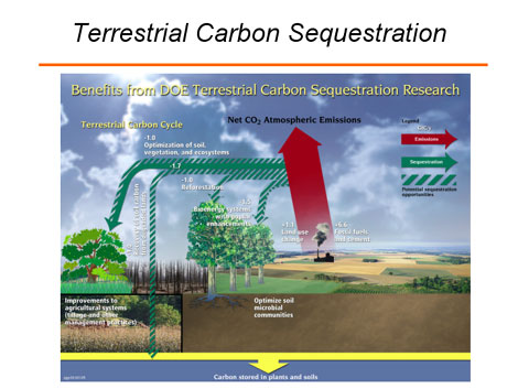 [CO2sequesteration.jpg]