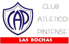 PINTENSE Y LAS BOCHAS