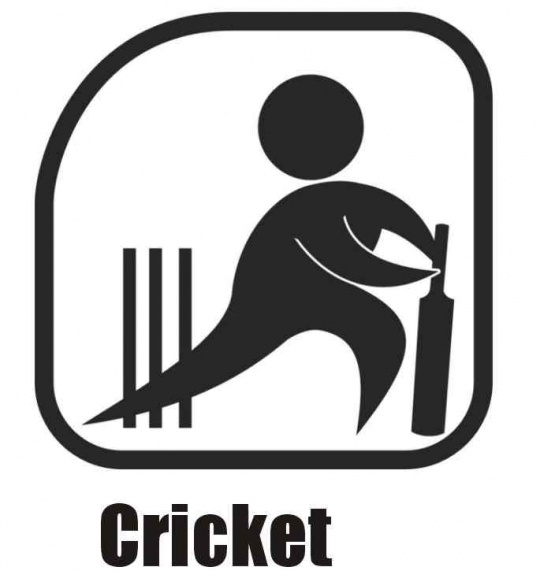 cricket passion cricket logos