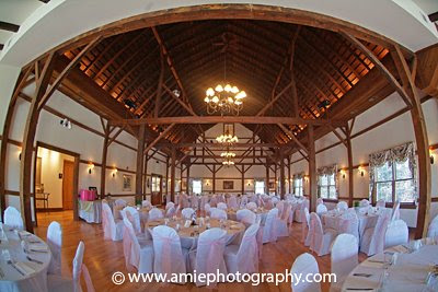 Weddings by amie anne jose for 1 lincoln center oakbrook terrace il