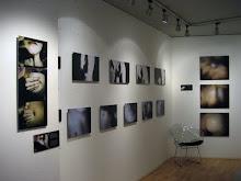 EVOLUCIÓ 2007