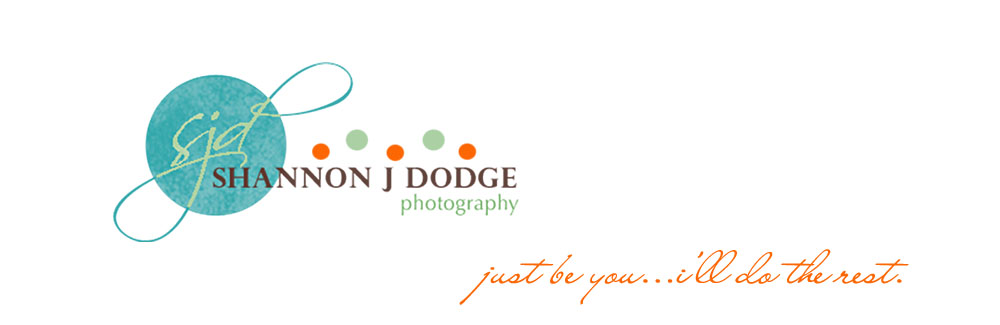 Shannon J. Dodge Photography--Custom, On Location Portaiture serving Fort Myers, Cape Coral, Naples