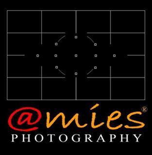 amies photography