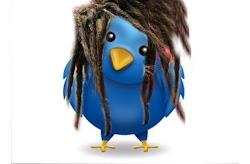 Twitter Pincel de Raiz