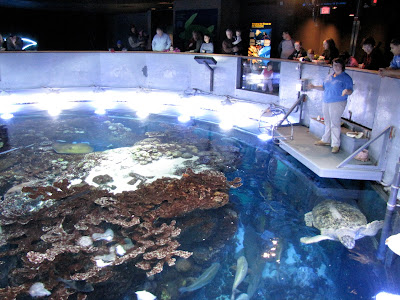 new england aquarium tank