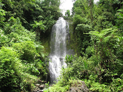 Another of the Waterfalls from the tour. - Courtesy of 1.bp.blogspot.com