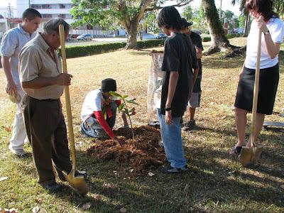 tree planting saipan