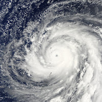 typhoon choi wan