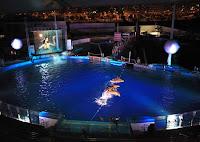 espectaculo nocturno oceanografico de valencia. horario y entradas