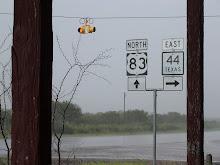 Rain sets in
