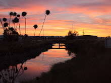Worland Canal Pastels