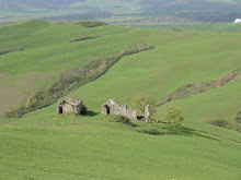 Farm Ruins
