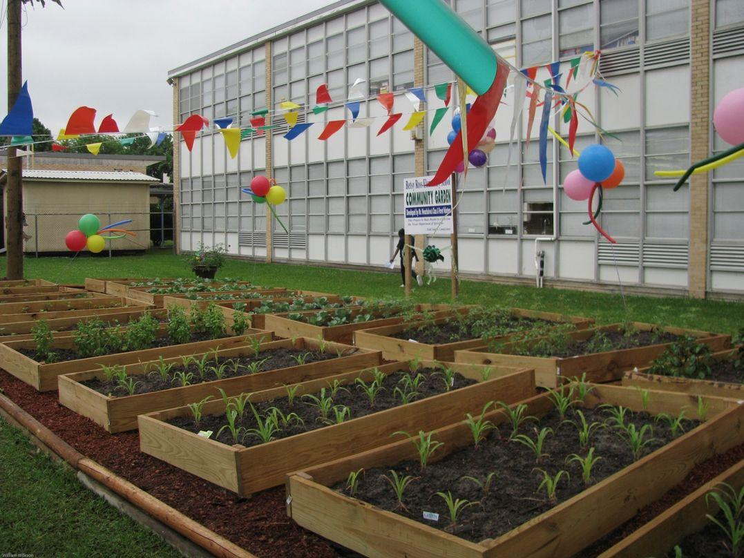 Texas Department of Agriculture: Houston School\'s Community Garden ...
