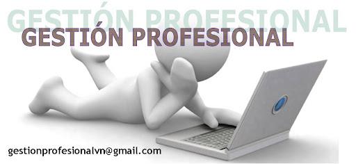 Gestión Profesional VN