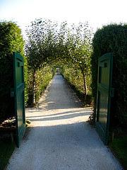 Veg Garden Heligan.JPG
