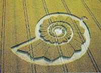 fibonacci, cerchi nel grano