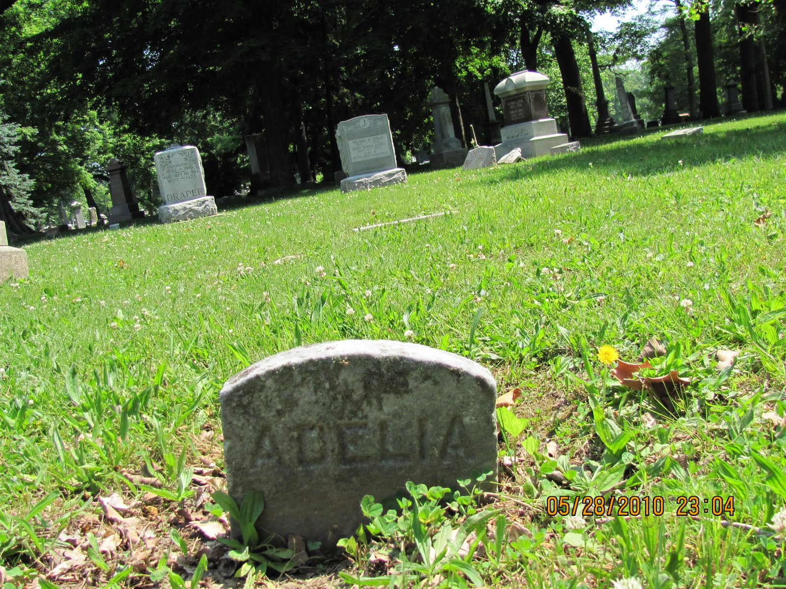 Illinois vermilion county catlin - She Was Born July 9 1833 In Gilfield Montgomeryshire Wales She Passed September 7 1923 In Muncie Vermilion County Illinois
