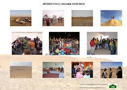 JÓVENES POR EL SAHARA 2008-2009