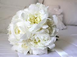como é o bouquet dos seus sonhos?