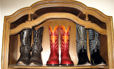 The Boots in My Closet
